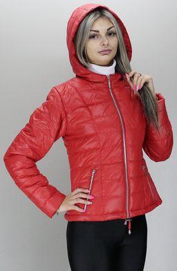 Червона куртка жіноча КР-3 - купити недорого — Donna Bella - MF-КР3-1-40 1652d234b51db